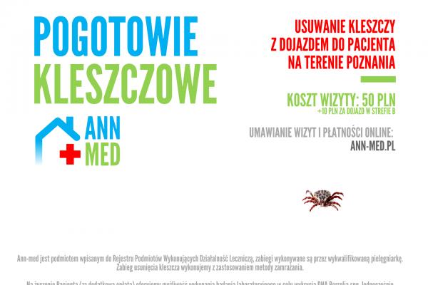 Usługi Opieka Pielęgniarska Poznań